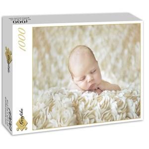 """Grafika (01606) - Konrad Bak: """"Baby sleeping in the Roses"""" - 1000 pieces puzzle"""