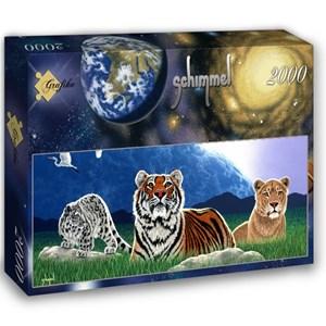 """Grafika (02602) - Schim Schimmel, William Schimmel: """"Shared World"""" - 2000 pieces puzzle"""