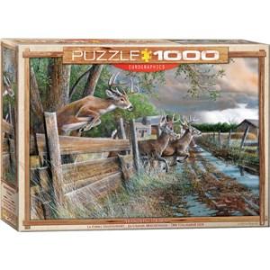 "Eurographics (6000-0794) - Kevin Daniel: ""Abandoned Farm"" - 1000 pieces puzzle"