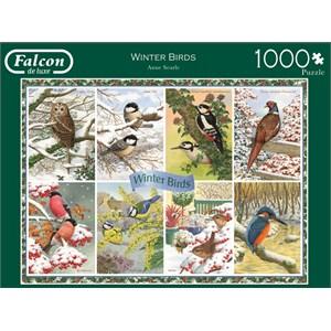 "Falcon (11234) - Anne Searle: ""Winter Birds"" - 1000 pieces puzzle"