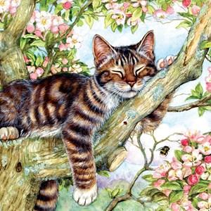 """SunsOut (50423) - Debbie Cook: """"Sleepy Cat"""" - 500 pieces puzzle"""