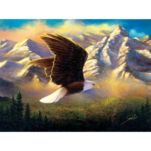 "SunsOut (69636) - Abraham Hunter: ""Flying High"" - 1000 pieces puzzle"
