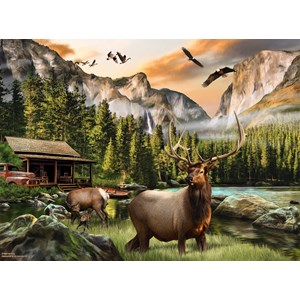 "SunsOut (49004) - Nigel Hemming: ""Elk Country"" - 1000 pieces puzzle"