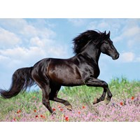 "Ravensburger (12803) - ""Beautiful Horse"" - 200 pieces puzzle"