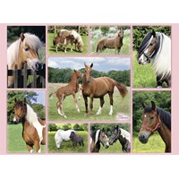 """Ravensburger (13174) - """"Horse Heaven"""" - 300 pieces puzzle"""