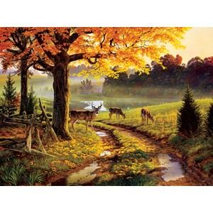 "SunsOut (34766) - Al Agnew: ""A Bend in the Road"" - 1000 pieces puzzle"